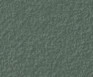Malay Grey